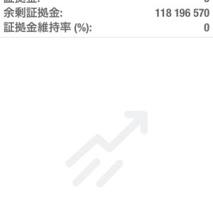 1/24 海外FXとバイナリー 損益報告 +35,334,000円 月累計 +116,196,970円