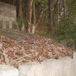 松ヶ崎の岩上神社(京都府京都市)
