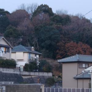 石光山(奈良県御所市)