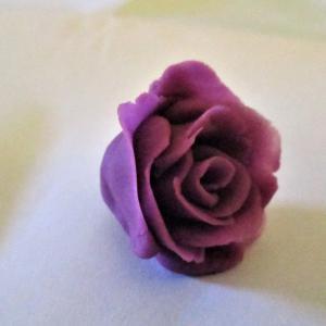 小さなバラ。A Tiny Rose