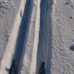 スキートラック。Ski Tracks