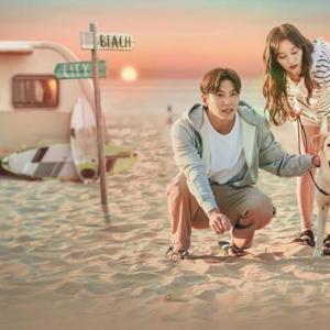 都会の男女の恋愛法 感想 韓国ドラマ|インタビュー形式で感じさせるリアリティ