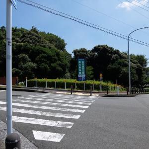 暑い最中、横浜アルプスをお散歩してきました(金沢動物園~鎌倉天園)-1