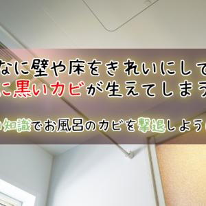 浴室の天井に黒カビが!どんなにキレイにしても生えてしまう場合