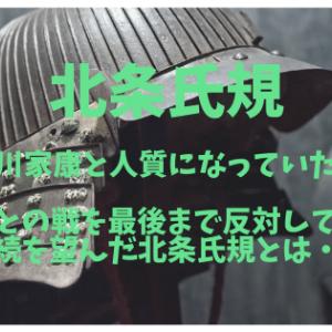 北条氏規  徳川家康と人質になっていた男  秀吉との戦を最後まで反対して北条家存続を望んだ北条氏規とは・・・