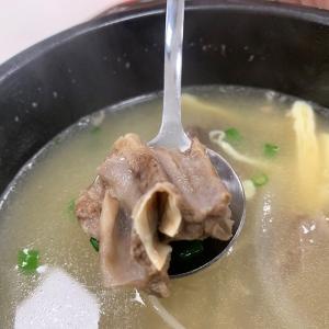 見晴抜群のフードコートにある韓国料理~Cook&Bar~