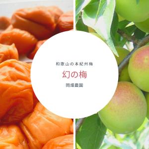 【幻の梅】梅好きにはたまらない和歌山県岡畑農園の梅