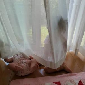 カーテン洗いはいつまでできるのか???