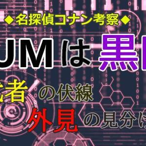RUMは黒田兵衛 ~影武者の伏線と外見の違い~