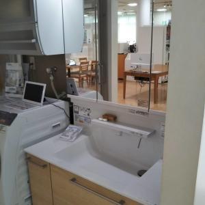 洗面化粧台の仕様決定 TOTOオクターブにつけたオプションは?