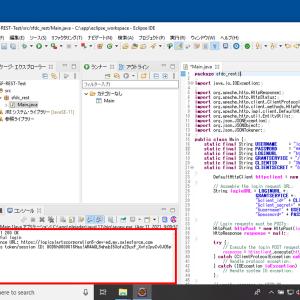 Salesforce Rest API連携用 Javaプログラム(Eclipse IDE) 設定(3)  - JavaプログラムによるSalesforceとの連携(Rest APIによるログイン)