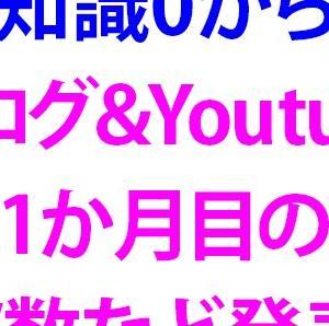 【経験0からのブログ&Youtube1か月】PV数などを発表します!