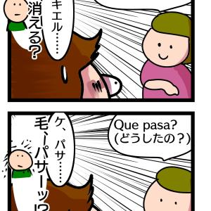 285話 スペイン語学習!意味はわからなくても聞き取りはできるようになった結果脳内がカオスに