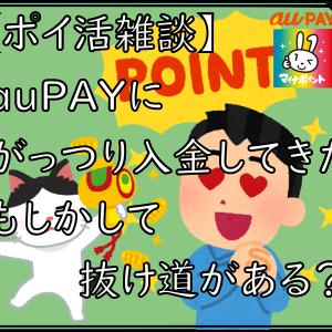 【ポイ活雑談】auPAYにがっつり入金してきた もしかして抜け道ある?