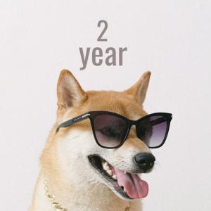 【はてなブログ継続2周年】ブログを続けて思うことを振り返る―アクセス/収益/良かったことなど