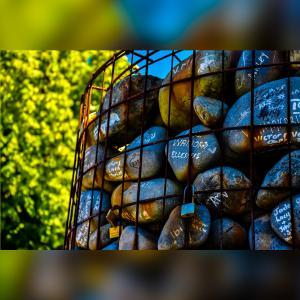 【テカポ湖へ旅行に行く人必見】クライストチャーチ、テカポ湖のおすすめ情報