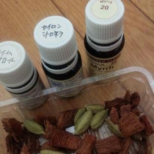 アロマでゴキブリ対策!ゴキブリの嫌いな精油は試してみました