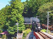 【父子キャンプ/鉄道撮影】秩父鉄道とSLパレオエクスプレスを撮るためのキャンプ②|こどもとキャンプ~食う撮る遊ぶ~