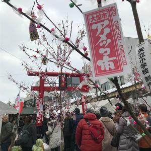 【秋田】大館アメッコ市と犬っこまつりを1日で周ろう【冬の伝統行事】
