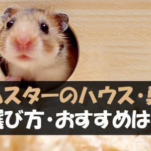 ハムスターのハウス・巣箱の選び方【おすすめはこれ!】