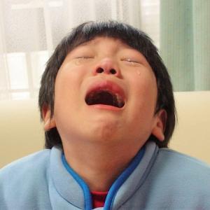 2歳児が癇癪で泣きやまないし叫ぶから放置してOK?やってはいけないこととは?
