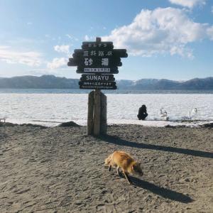 砂を掘ったら温泉が!道東おすすめ観光の屈斜路湖・砂湯を紹介!