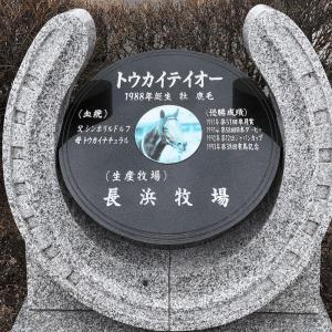 ウマ娘効果で人気?道の駅「サラブレッドロード新冠」を紹介!