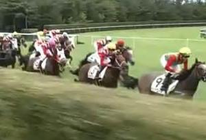 アイビスSD2020~堅そうな軸馬のいるレース的中!