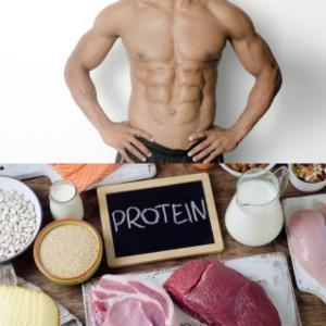 筋肉をつける事において、タンパク質が重要視される訳とは!?
