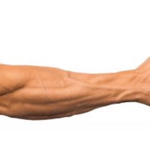 「男必見」前腕の筋肉をつけ血管を出す。おススメのトレーニング法とは。