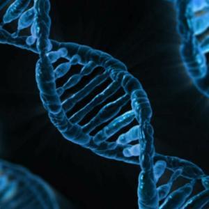 遺伝子検査キットを科学的視点から選択!その気になるランキングとは