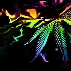 大麻合法といえどまだまだ規制は厳しい!そんな状況であるビジネスが伸びてきてるらしい