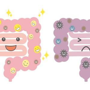 腸の疲労は便秘の大きな原因、プチ断食も効果があるのでお試しを!