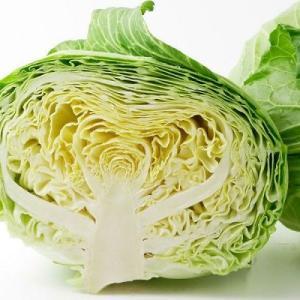 食前キャベツダイエットを3か月実行すれば体重は5%痩せられる!