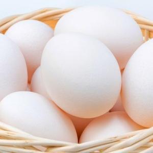卵は完全な栄養食材かつ低コストで健康ダイエットに最適です