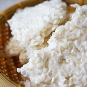 僕らは糀に洗脳されていた! KOUZI 「糀」 和食の母 発酵文化の金字塔 歴史と効能に迫る3
