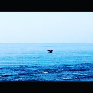 【Report4】☆海の上を歩こう 海の中を探検しよう☆ かつうら海中公園海中展望塔 千葉県房総半島エリア