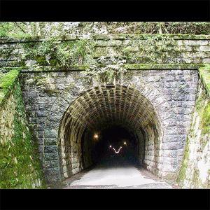 【小説や映画の地を訪れてみよう】そとあそびのディスティネーション (旧)天城トンネル 静岡県伊豆市湯ヶ島エリア 《そとあそびNO.72》