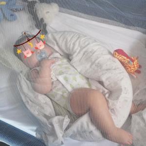 生後3ヵ月26日 - おもちちゃんエコー検査へ行く