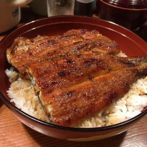 【鰻】大阪市旭区の鰻屋さん  魚伊【うなぎ】