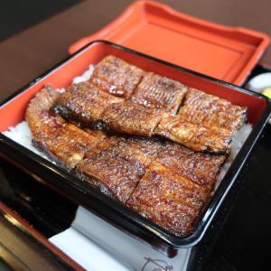 【鰻】三重県津市の鰻屋さん 丸円 2回目【うなぎ】