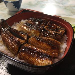 【鰻】宮崎県青島の鰻屋さん うなぎ千力【うなぎ】