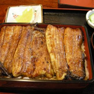 【鰻】静岡県浜松市の鰻屋さん 昔のうなぎ屋 2回目【うなぎ】