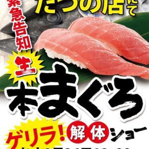 回転情報~回転寿司すし官太たつの店さん、生本まぐろゲリラ!解体ショー