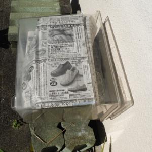 カブト虫飼育容器4