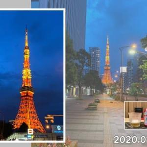 夜空に輝く東京タワーに惹かれて