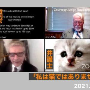 弁護士「私は猫ではありません」リモート裁判で