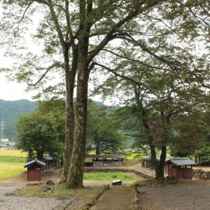 福井市 一乗谷村、安波賀町散策①「西山光照寺跡」