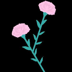カーネーションのイラスト ピンク