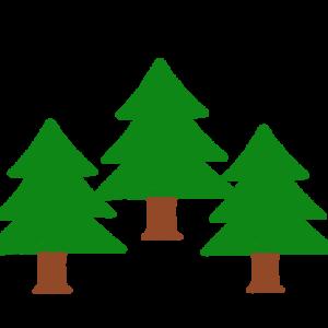 もみの木 (クリスマスツリー)のイラスト